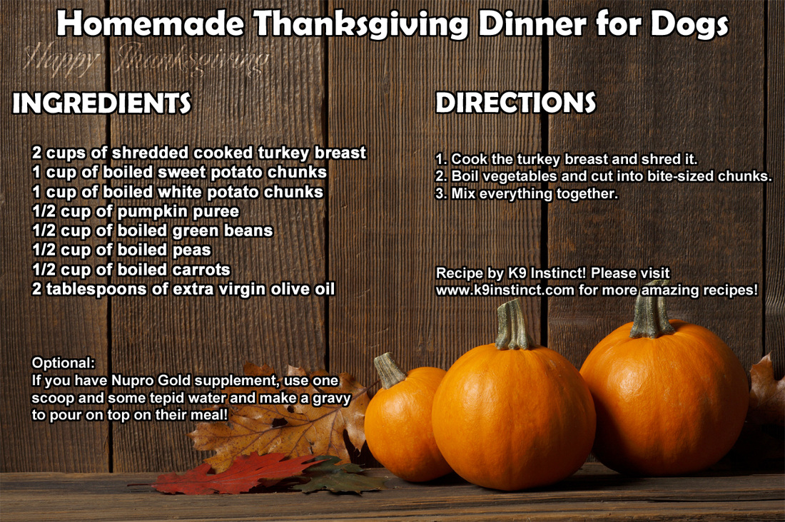 Homemade thanksgiving dinner recipe for dogs click here to learn more about a healthy homemade dog food diet for dogs if you are interested in more great recipes you can check out my homemade dog forumfinder